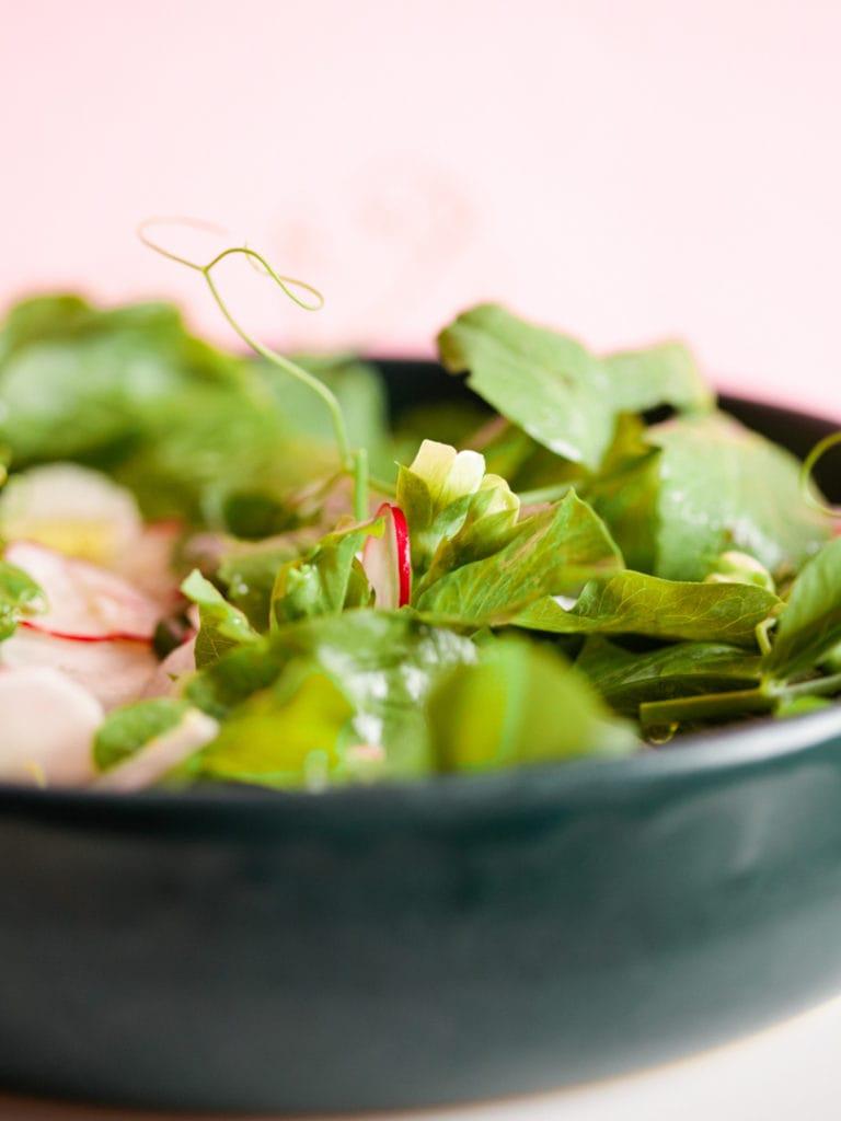 salat mit erbsenblätter und radieschen